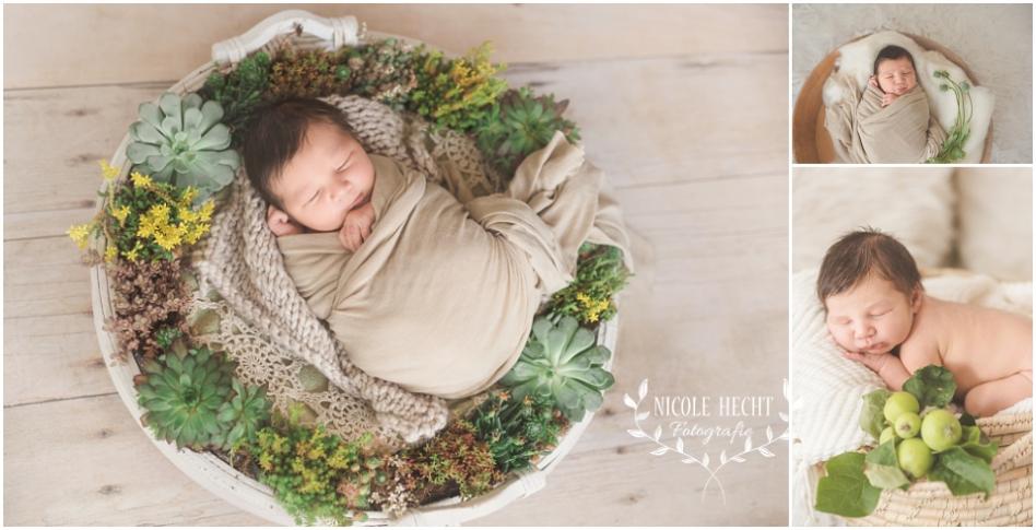 babyfotografie deggendorf familienfotos besondere erinnerungen blog fotografie nicole hecht. Black Bedroom Furniture Sets. Home Design Ideas